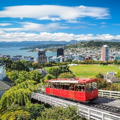 Play Wellington | Crown Relocations NZ