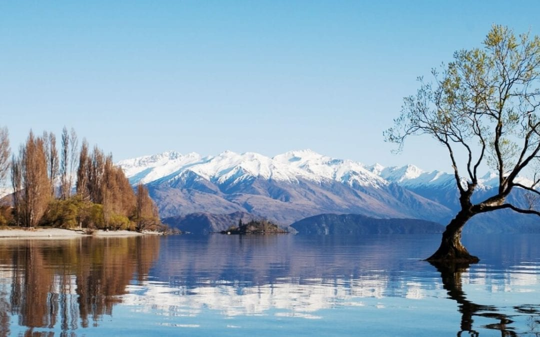 5 Reasons to Move to Wanaka