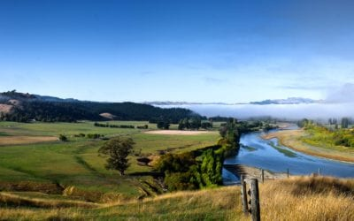 Hawkes Bay – Live, Work and Play!